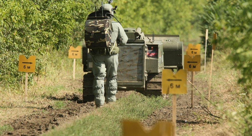 Разминирование Чечни и Ингушетии обещают завершить к 2018 году